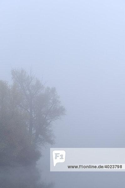 Fog over pond in autumn