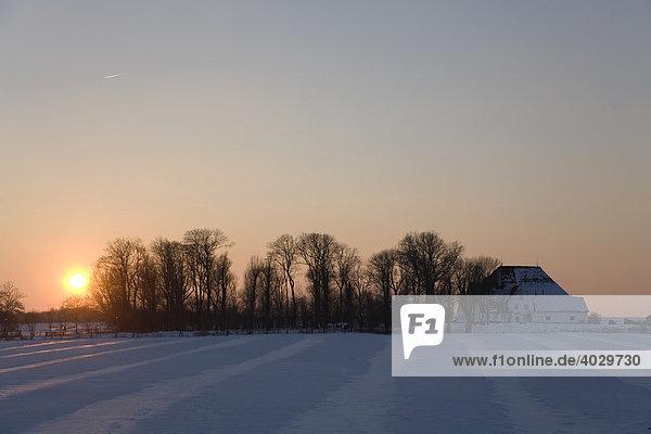 Sonnenuntergang am Roten Haubarg in der verschneiten Marsch  Witzwort  Nordfriesland  Schleswig-Holstein  Norddeutschland  Deutschland  Europa