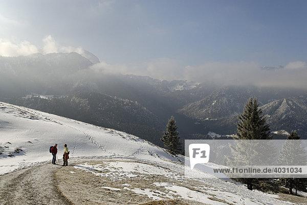 Am Farrenpoint bei Bad Feilnbach  in Wolken der Wendelstein  Oberbayern  Bayern  Deutschland  Europa