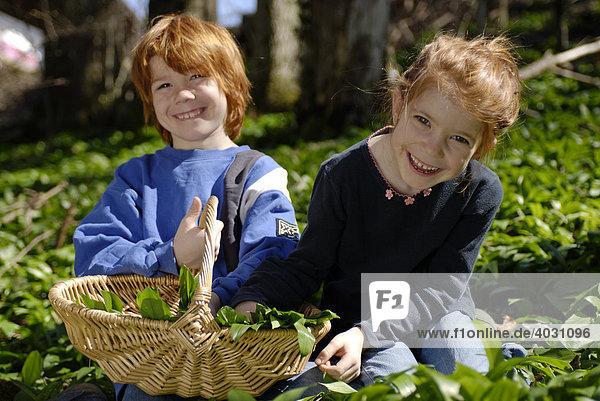 Junge und Mädchen mit Korb beim Bärlauch Pflücken im Wald