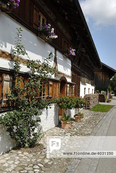 Bauernhaus in Trauchgau  Schwaben  Bayern  Deutschland  Europa