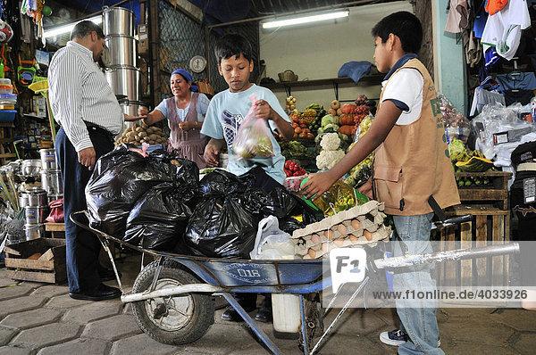 Kinderarbeit  Jungen transportieren Einkäufe für Kunden mit Schubkarre  städtischer Markt  Santa Cruz  Bolivien  Südamerika