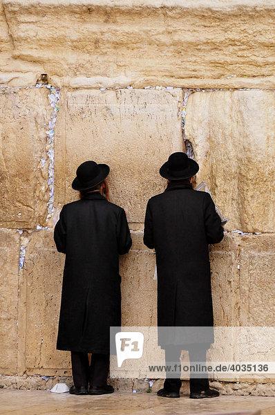Orthodox Jews praying at the Wailing Wall  Jerusalem  Israel  Near East  Orient
