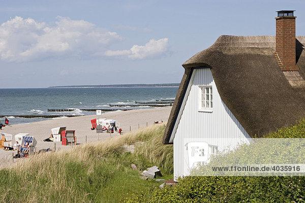 Ahrenshoop  Fischland-Darss  Mecklenburg-Vorpommern  Deutschland  Europa