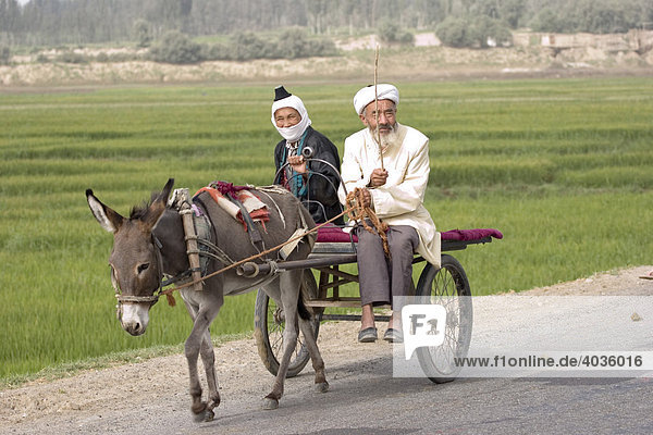 Ehepaar der Volksgruppe der Uiguren auf einem Eselkarren auf der Seidenstraße  China  Asien