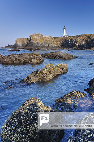 Yaquina Bay Leuchtturm  Newport  Lincoln County  Oregon coast  USA