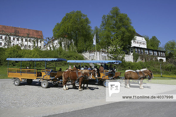 Horses and carriages in front of the Alten Schloss palace  Herrnchiemsee Island  Lake Chiemsee  Rosenheim district  Upper Bavaria  Germany