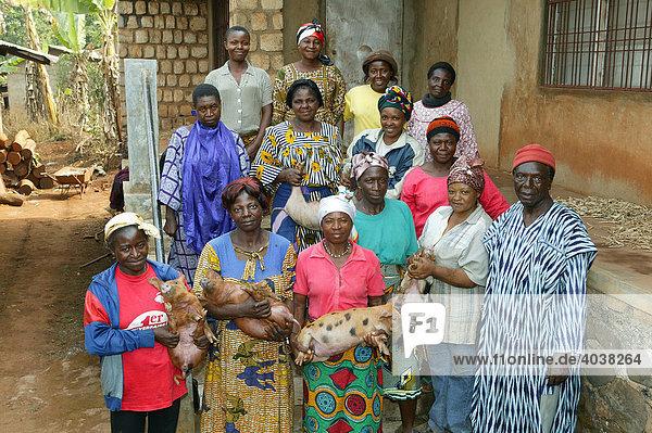 Frauen mit Ferkeln  Schweinezucht  Bamenda  Kamerun  Afrika