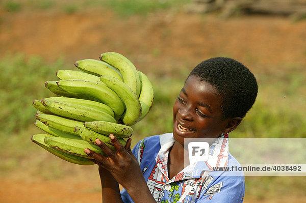 Junge mit Bananen  Manyemen  Kamerun  Afrika