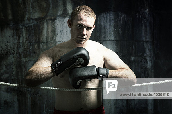 Portrait of a young boxer looking into camera