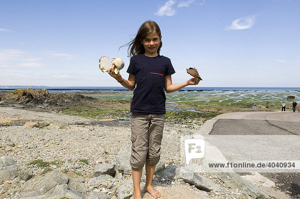 Girl with collected mussel shells in St. Brieuc Bay  Bretagne  France  Europe