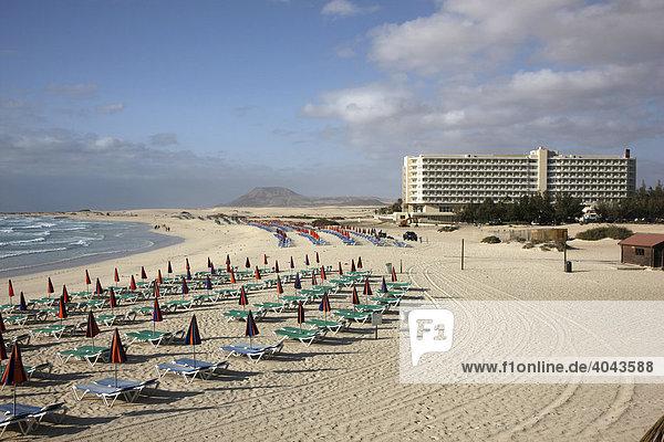 Dünenstrand  Liegeplätze  Grandes Playas  im Norden der Insel bei Corralejo  Fuerteventura  Kanarische Inseln  Spanien  Europa