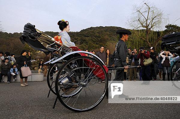 Maiko  Geisha in Ausbildung  sitzt in einer Rikscha im Maruyama Park  Japan  Asien