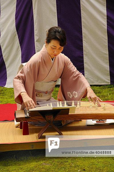 Frau im Kimono spielt eine japanische Zither  Koto  im Kamigamo Schrein in Kyoto  Japan  Asien