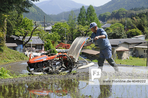 Reisbauer bringt seine Pflanzmaschine zum Reisfeld  Ohara bei Kyoto  Japan  Asien