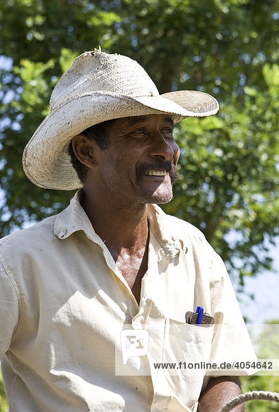 Cuban on a horse with a typical Cuban hat  Cuba  the Caribbean  America