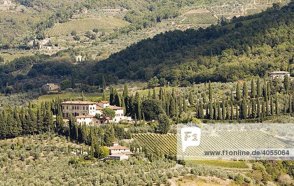 Landschaft mit Weinbergen  Weingut und Wäldern bei San Casciano in Chianti  Toskana  Italien