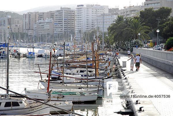 White fishing boats and sailing boats in the port at the Passeig Maritim  Port de Palma  Palma de Mallorca  Majorca  Balearic Islands  Mediterranean Sea  Spain  Europe