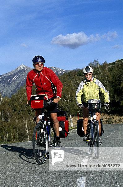 Radfahrer  Col de Vergio  Korsika  Frankreich  Europa