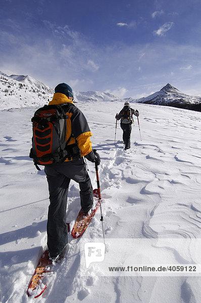 Schneeschuh-Wanderer  Aufstieg zum Monte Rosso  Roteck  Hochpustertal  Dolomiten  Südtirol  Italien  Europa