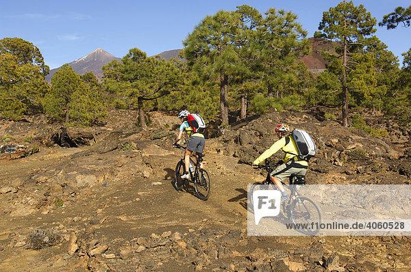 Radfahrer im Gelände  Teneriffa  Kanarische Inseln  Spanien  Europa
