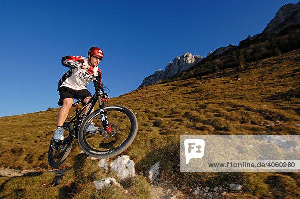 Marcus Klausmann  Mountainbiker auf der Kampenwand  Chiemgau  Bayern  Deutschland  Europa