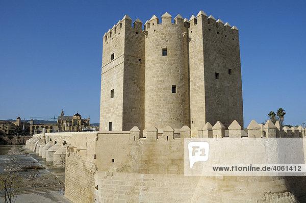 Torre de la Calahorra  Turm  Cordoba  Andalusien  Spanien  Europa