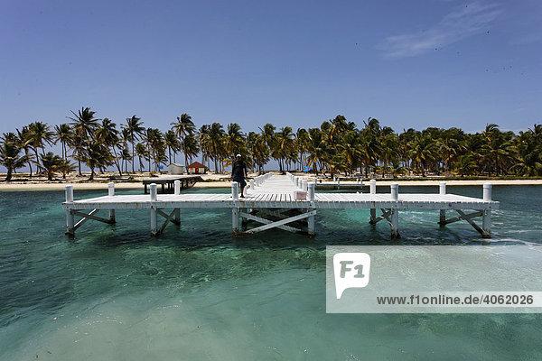 Anlegesteg vor Insel und Naturpark Half Moon Cay  Turneffe Atoll  Belize  Zentralamerika  Karibik
