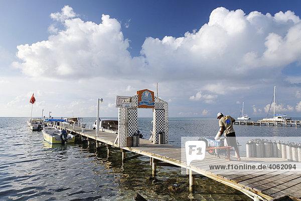 Mann auf Bootssteg belädt Schubkarre mit Tauchgeräten  San Pedro  Insel Ambergris Cay  Belize  Zentralamerika  Karibik