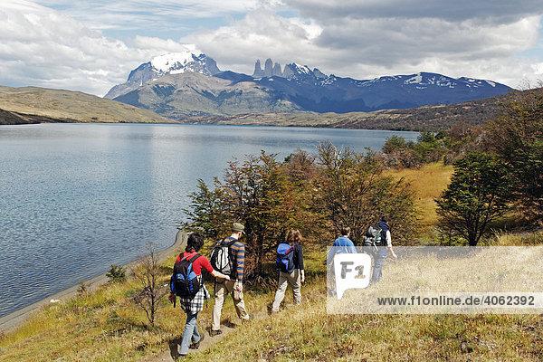 Wanderer an der Laguna Azul  Torres del Paine Nationalpark  Patagonien  Chile  Südamerika