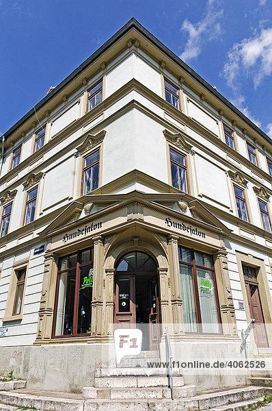 Hundesalon in altem Haus  Weimar  Thüringen  Deutschland  Europa