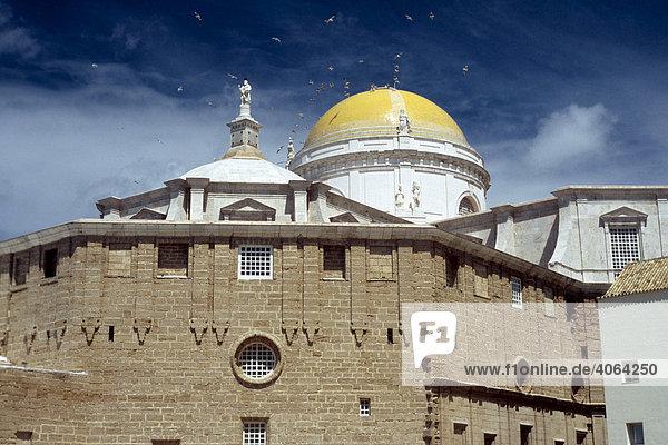 Kathedrale von Cadiz  Costa de la Luz  Andalusien  Spanien  Europa