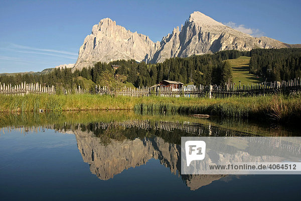 Lang- und Plattkofel an der Hochalm Seiser Alm  Alpe di Siusi  in den Dolomiten im Sommer  bei Seis am Schlern  Südtirol  Italien  Europa
