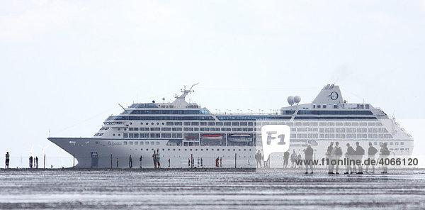 Wattwanderer vor Kreuzfahrtschiff Regatta  Cuxhaven  Niedersachsen  Deutschland  Europa