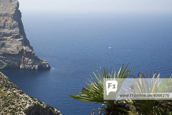 Felsen zur Bucht Cala figuera am Cap Formentor  Mallorca  Balearen  Spanien  Europa