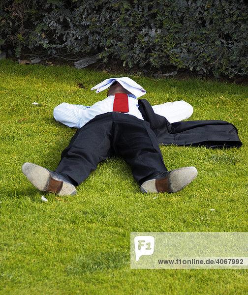 Geschäftsmann schläft im Park  Paris  Frankreich
