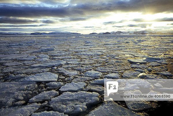 Fjord mit Packeis  Spitzbergen  Norwegen  Arktis