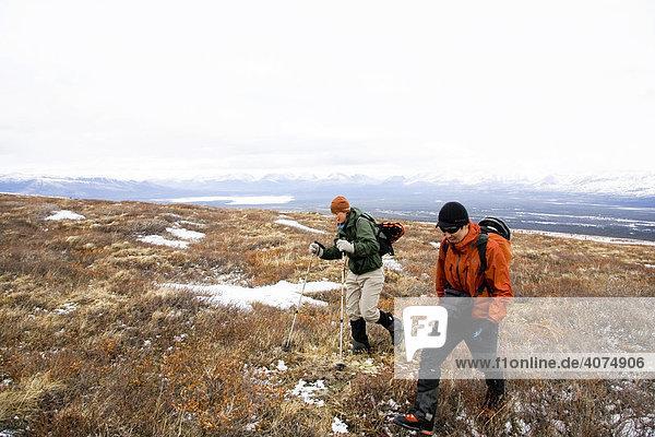 Hiking  mountains  St. Elias Range  Kluane National Park  Yukon Territory  Canada