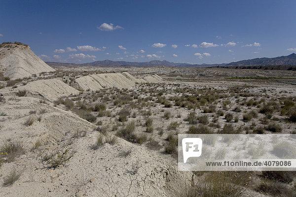 Wüstenartige Landschaft bei Abanilla  Region Murcia  Spanien  Europa