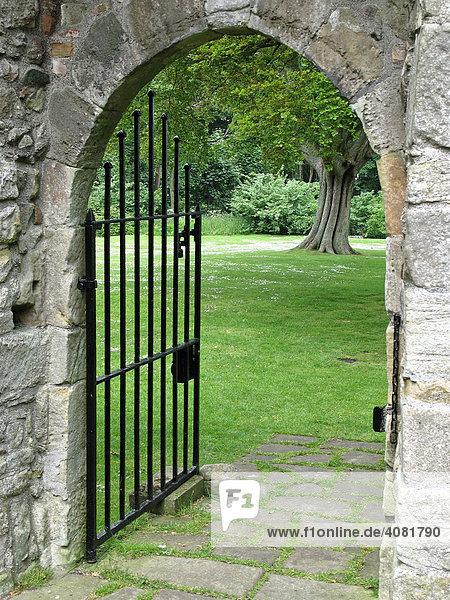 Tor mit Gitter und Blick auf die Wiese  Loch Leven Castle  Ruine  Loch Leven  Großbritannien