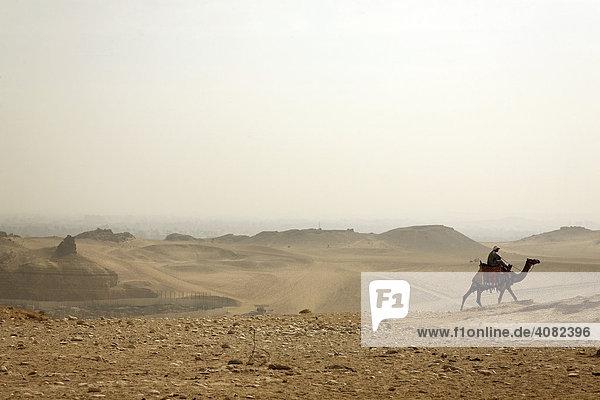 Kamelreiter in der Wüste  Gizeh  Kairo  Nordäygpten  Äygpten  Afrika