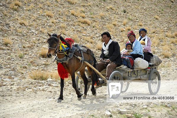 Glückliche tibetische Familie unterwegs mit Pferdekutsche bei Old Tingri Tibet China
