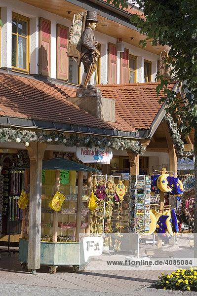 Titisee Schwarzwald Baden-Württemberg Deutschland