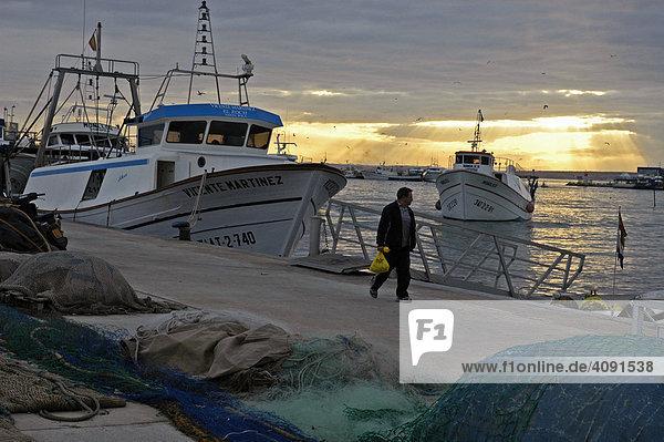 Fischerboote im Hafen von Santa Pola  Costa Blanca  Spanien