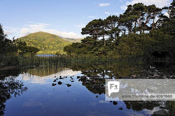 Loch Lein und der Berg Shehy  Ross Halbinsel  Killarney Nationalpark  Irland