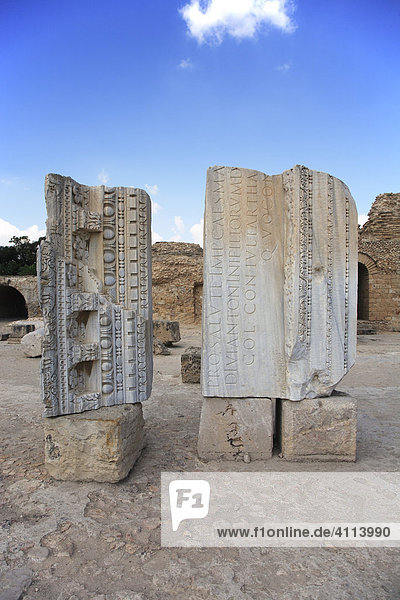Roman columns in Carthage  Tunisia