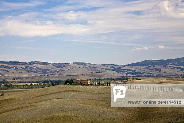 Mit Zypressen (Cupressus) gesäumtes Landhaus im Tal Val d'Orcia Crete Toskana Italien