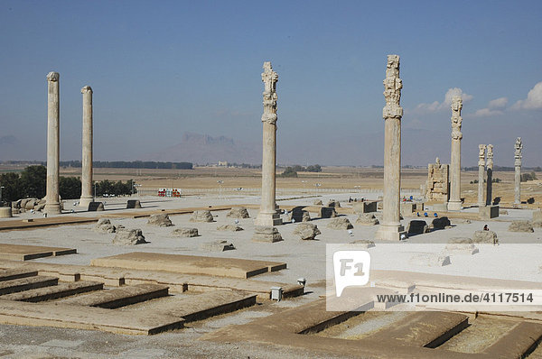 Apadana (reception hall)  Persepolis  Iran