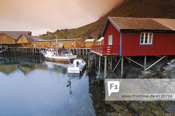 Wooden houses  fishing village Austvagoy  Lofoten  Norway  Scandinavia  Europe