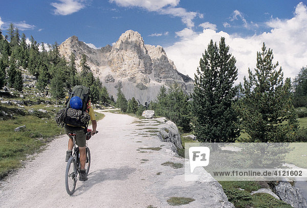 Mountain biker  Fanes Group  Fanes-Sennes-Braies Nature Reserve  Fanes Group  Bolzano-Bozen  Italy  Europe